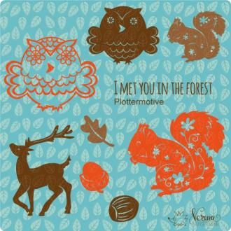 I met you in the Forest